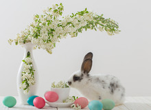 Rabbit And Flowers In A Vase O...