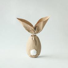 Easter Bunny Paper Gift Egg Wr...