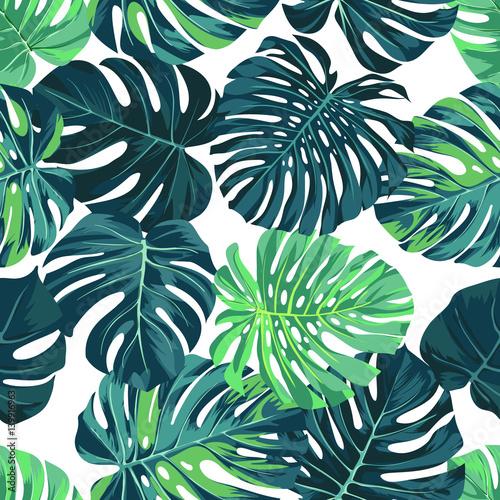 Wektor wzór z zielonych liści palmowych monstera na ciemnym tle. Letni wzór tkaniny tropikalnej.