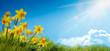 Leinwandbild Motiv Spring flower