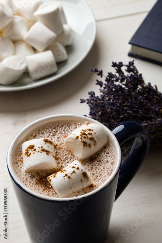 Foto op Plexiglas Chocolade hot cocoa with marshmallow