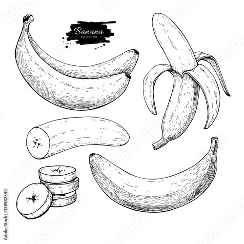 Fototapeta Banana set vector drawing