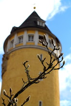 Bare Magnolia Twig With Buds Against Old Water Reservoir Tower In Spa Town Bad Ems, Germany.