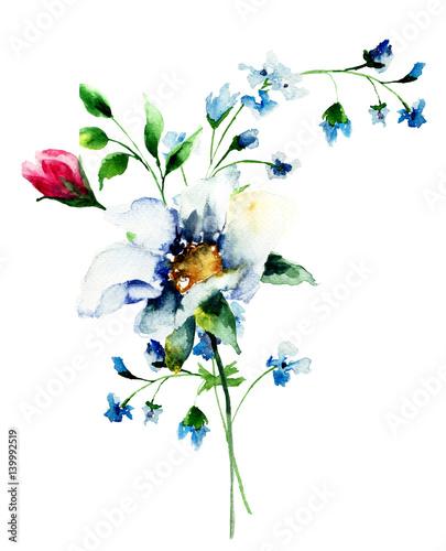 Fototapety, obrazy: Original Summer flowers