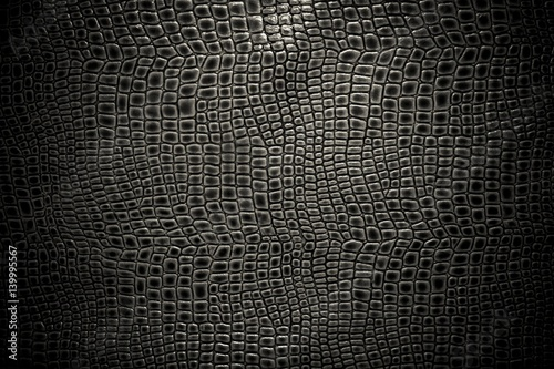 Crédence de cuisine en verre imprimé Crocodile Crocodile leather texture background. Macro shot. Stock image.