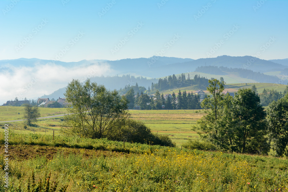 Misty morning rural landscape of a fields in summer. Pieniny mountains. Poland.