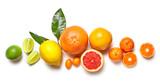 various citrus fruits
