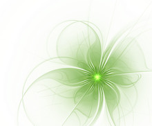 Abstract Fractal Green Flower On A White Background