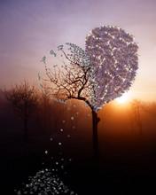 Abstract Fantasy Photo Montage Of Broken Heart Tree