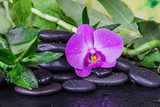 Spa concept with zen stones, orchid flower and bamboo