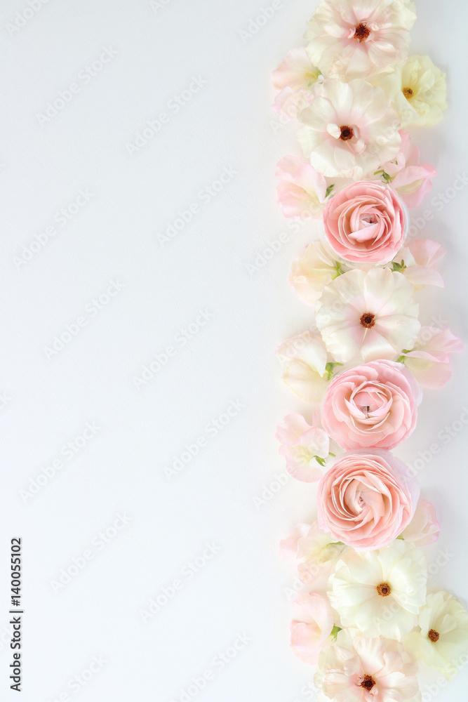 Photo art print beautiful pink and white ranunculus flowers photo art print beautiful pink and white ranunculus flowers sweetpea flowers on white backgroun europosters mightylinksfo