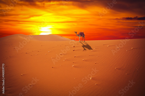 La pose en embrasure Brique Sands dunes in the desert
