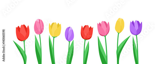 Fototapeta Banner mit Tulpen (in Weiß) obraz