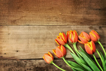 Orange Tulips Over Wood Table Top