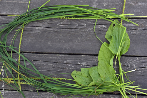 Fotografija  Plantain and grass on wooden background macro