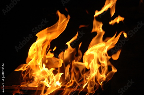 Fototapety, obrazy: fire campfire on a dark background