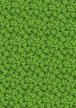 Clover Meadow Background
