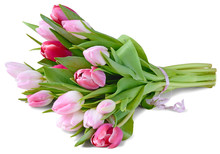 Colorful Tulips Bouquet Lying