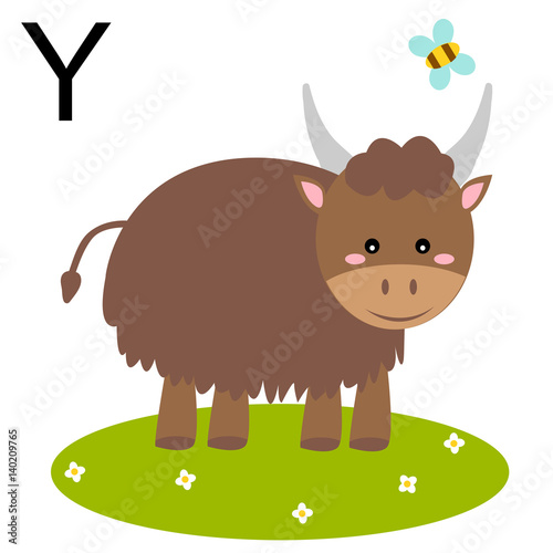 animals. alphabet children colored letter y. vector illustration yak