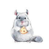 Chinchilla and cheese. Watercolor illustration, hand-drawn cute mouse - 140211729