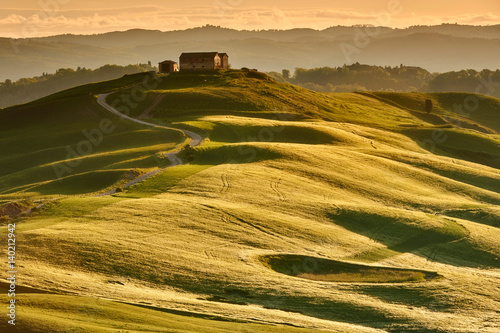 Staande foto Honing Fresh Green tuscany landscape in spring time - wave hills, cypresses trees, green grass and beautiful blue sky. Tuscany, Italy, Europe