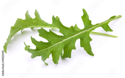 Close up studio shot of green fresh rucola leaves isolated on white background Wallpaper Mural