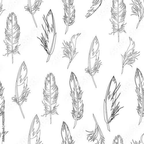 Photo  Feather seamless pattern