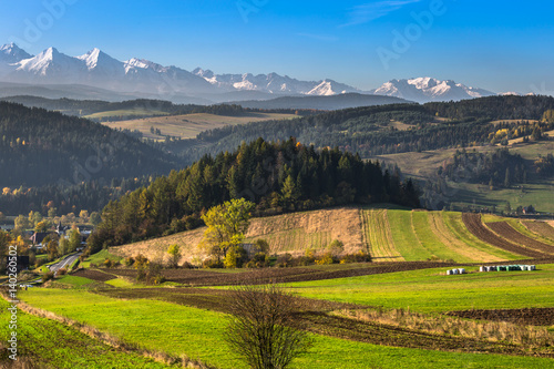 Canvas Prints Honey Tatra mountains in rural scene, Poland