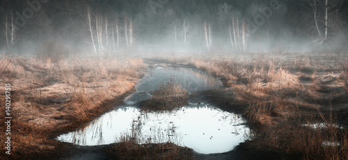 Fotografía March. Spring puddle