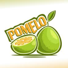 Vector Logo Pomelo Fruit: Stil...