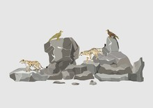 Snow Leopards And Eagles Sitting On Rocks Vector Illustration