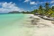 Beautiful white-sand beach next to turquoise water