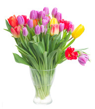 Bouquet Of Bright Spring Tulips In Vase Isolated On White Background