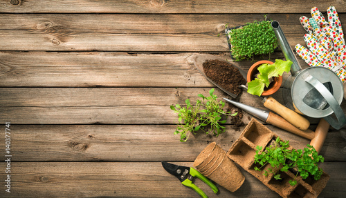 Poster Jardin Gardening tools, seeds and soil on wooden table