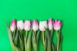Leinwandbild Motiv Bunch of spring tulip flower