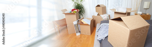 Fotografie, Obraz  Moving boxes in new apartment