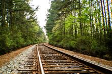 Texas Railroad In Springtime
