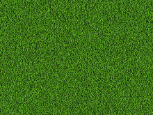 Natural Grass Texture Background In Bright Yellow Green Color Tone. Top View. 3D Illustration.