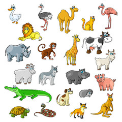 Zoo animals, birds and pets vector cartoon icons
