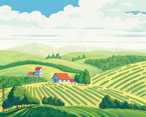 Fotobehang Wit Rural summer landscape with hills and village.