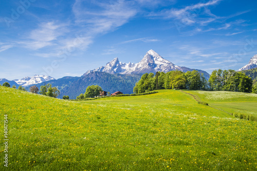Deurstickers Landschappen Idyllic landscape in the Alps with blooming meadows in summer