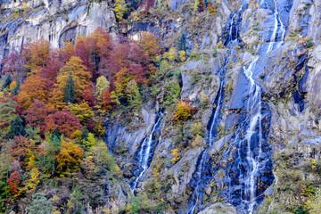 Naklejka Colori in Val di Mello