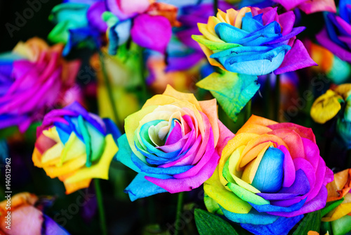 Fototapety, obrazy: colorful rainbow roses