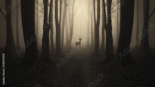sylwetka-jelenia-na-lesnej-sciezce-ciemny-surrealistyczny-krajobraz