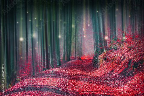 Magic fairytale forest with fireflies lights and mysterious road