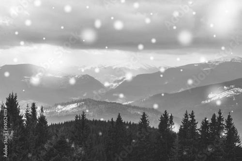 Foto op Canvas Oost Europa Чёрно-белое фото. Панорама Карпатских гор зимой