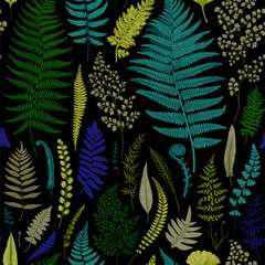 Fototapeta Liście Seamless pattern. Ferns. Vintage vector botanical illustration. Vivid