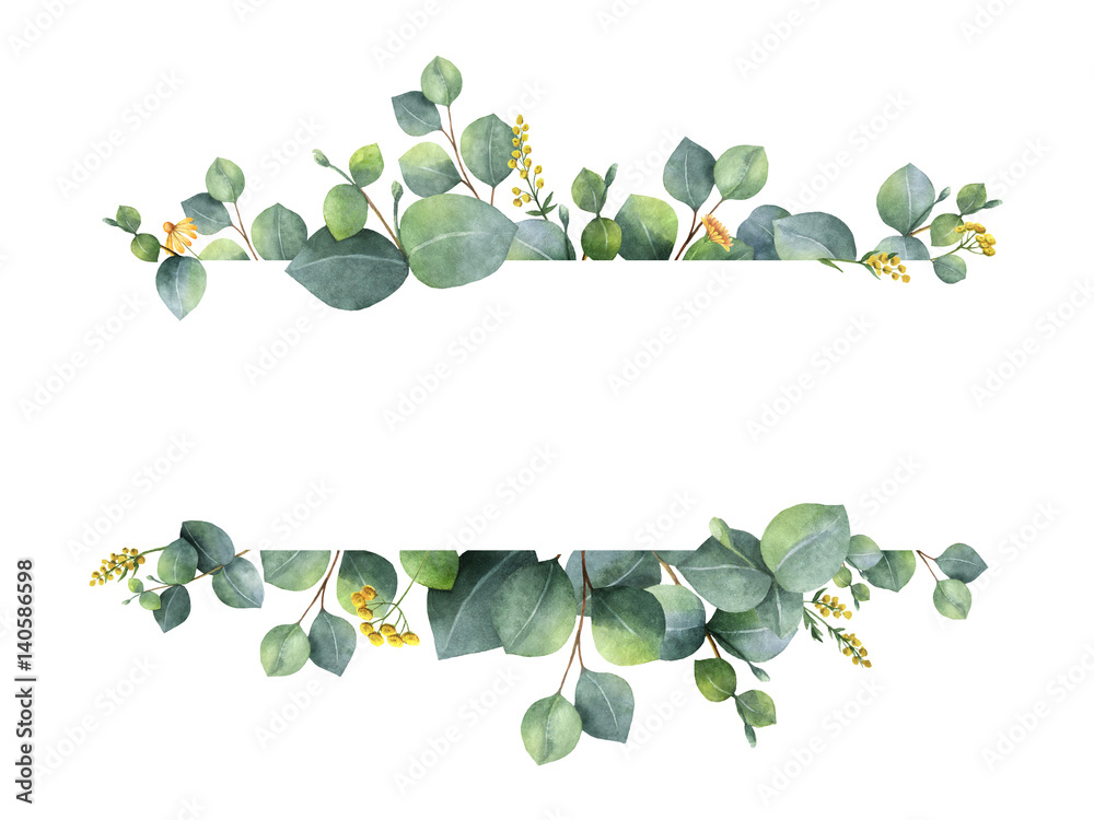 Fototapety, obrazy: Watercolor green floral banner with silver dollar eucalyptus leaves and branches isolated on white background.