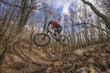 Mountain biker 19
