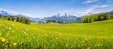 Fototapeta Landscape - Idyllic landscape in the Alps with blooming meadows in summer